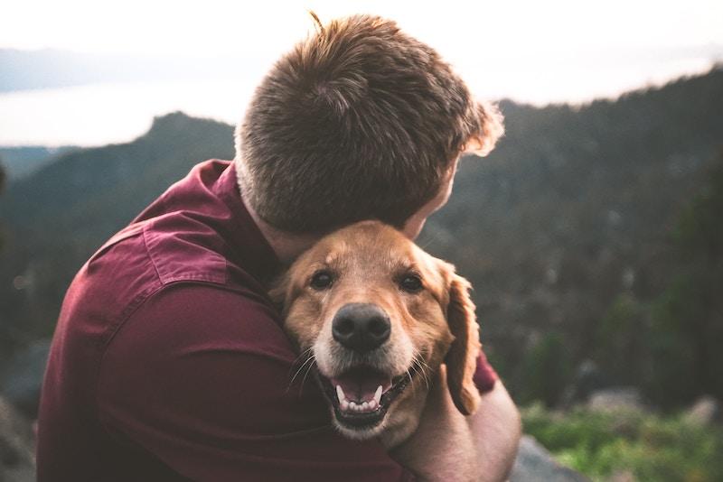 Koirat ja mies halaavat